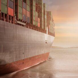 NFT Platform Cargo